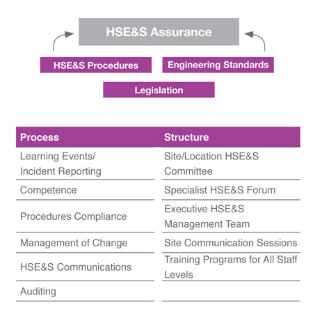 HSE&S Assurance System